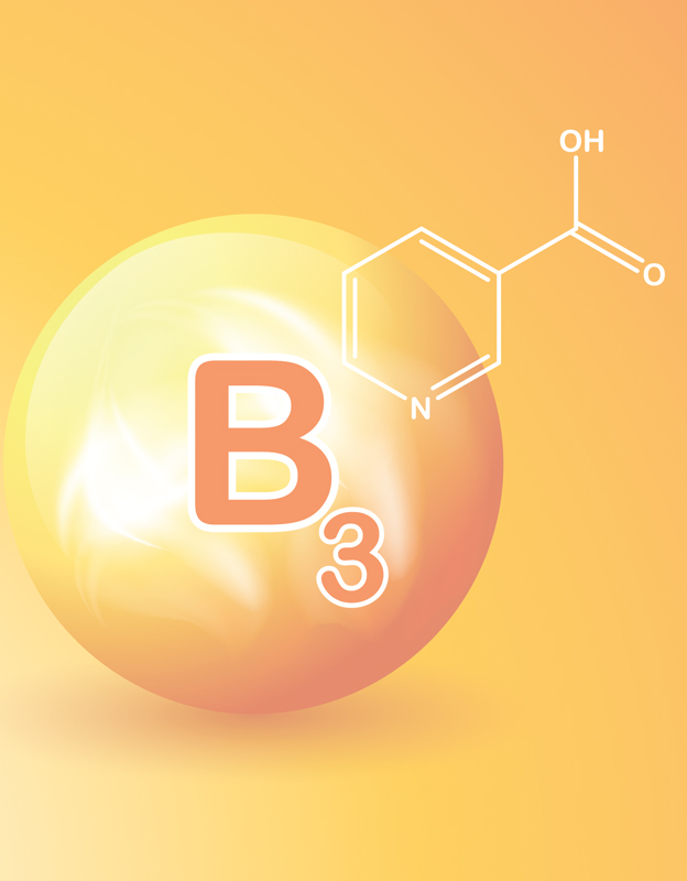 Niacin<br> - <br>contributes to maintaining proper energy metabolism and helps maintain healthy skin.